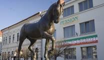 penzion horse inn hotel